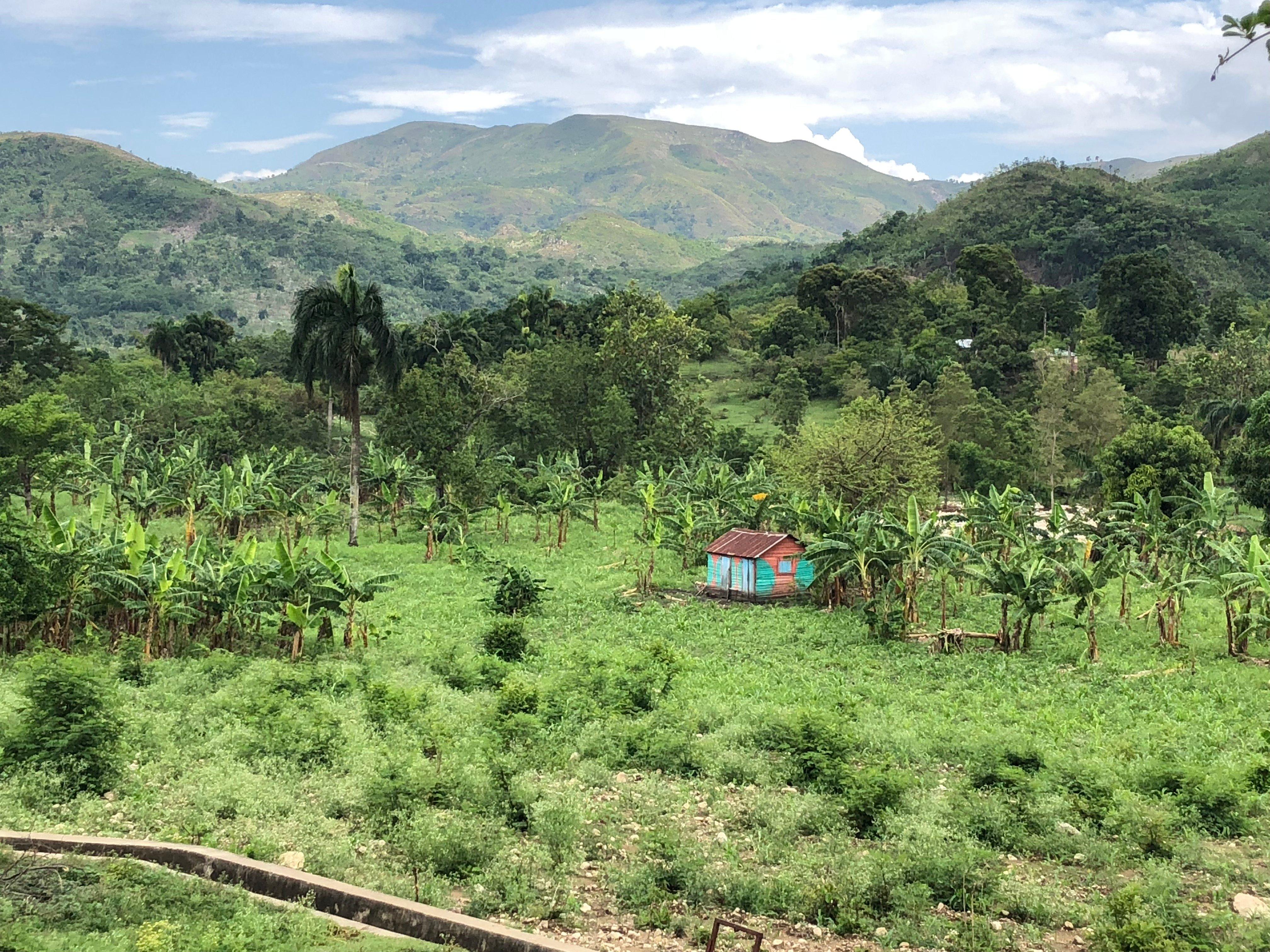 4 Rural Life